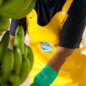 Chiquita et les objectifs de développement durable des Nations Unies: notre engagement pour une planète durable